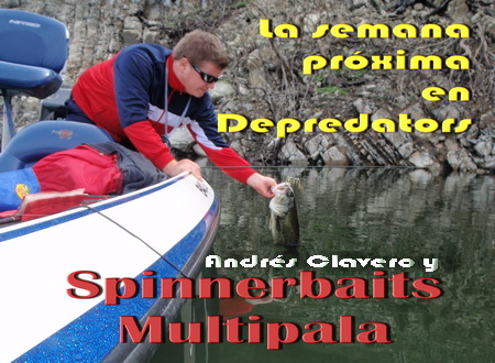multi_spinnerbaits