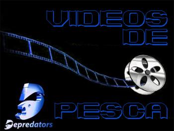 videos_depredators