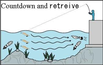 pesca de calamar 2