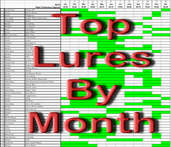 Lure-Ranking-monthly