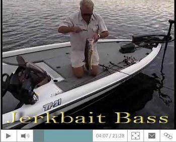 jerkbait-bass