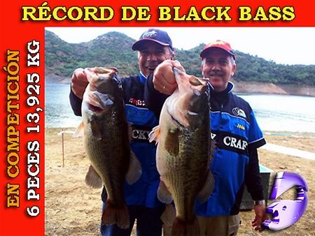 record-europa-bass