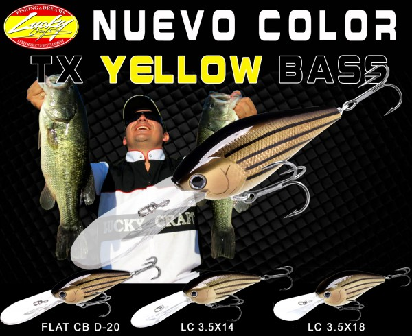 TX YELLOW BASS copia
